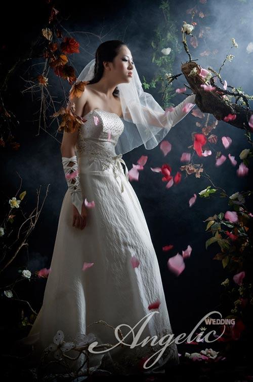 Bộ sưu tập áo cưới Bright Angel - 4