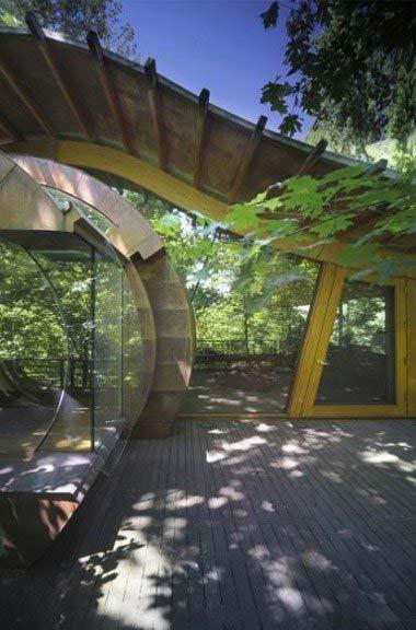 7 năm kiến tạo nhà gỗ trong rừng xanh, Phi             thường - kỳ quặc, nhà gỗ,kiến tạo,7 năm,lạ,đặc biệt