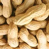 10 lợi ích của đậu phộng