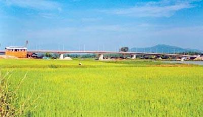 Bật mí về các cây cầu của Đà Nẵng - 2