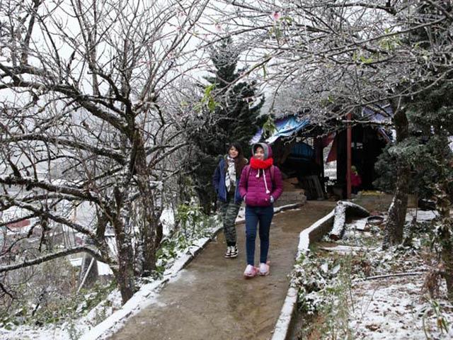 Clip: Mưa tuyết dày đặc trên đỉnh Ô Quy Hồ