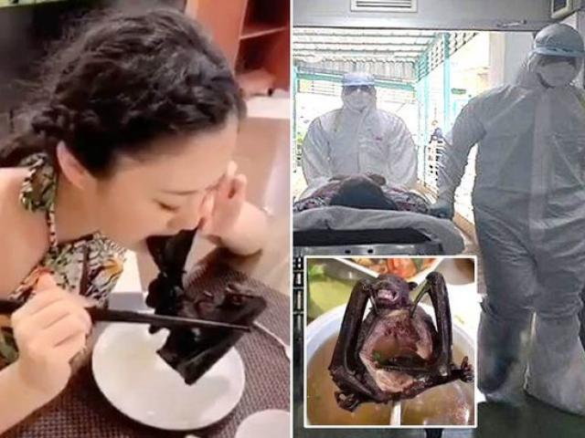 Virus khiến 17 người chết ở TQ:  Lộ video nguyên nhân dịch bùng phát?