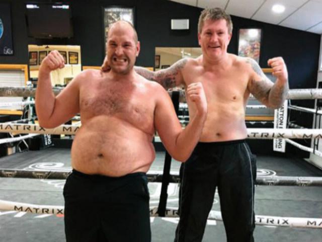 Fury luyện cú đấm thép đấu Wilder: Hạ knock-out hoặc nằm cáng đại chiến boxing