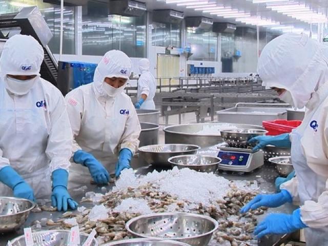 Xuất khẩu thủy sản Việt Nam sang Trung Quốc và EU giảm mạnh vì Covid-19