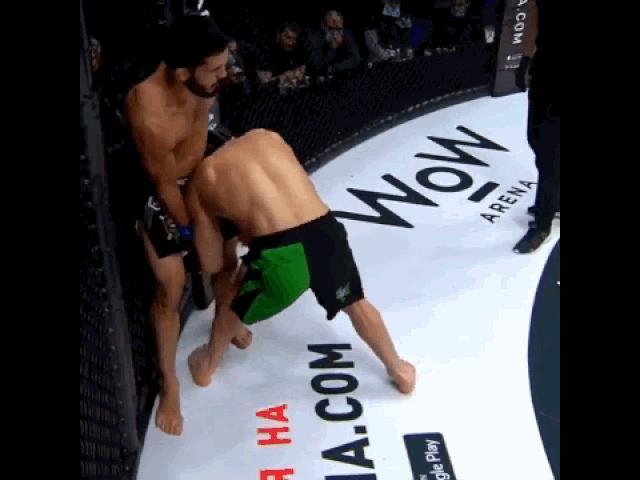 Dính đòn trỏ cực độc, võ sĩ ôm đầu đổ gục trên sàn đấu