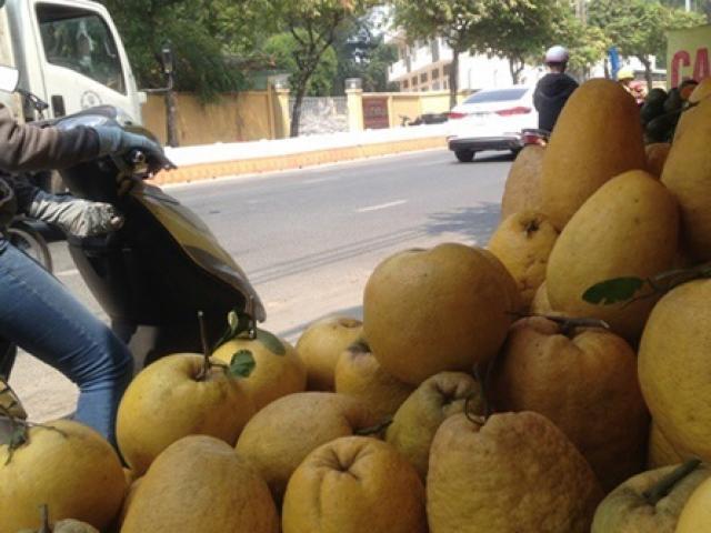 """Quả """"siêu to khổng lồ"""" ở Việt Nam giá tiền triệu, gần chín phải cho cây """"chống nạng"""""""