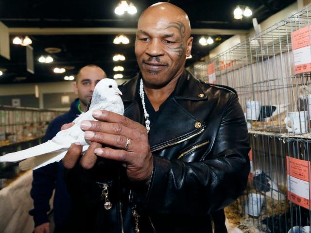 Tay chơi khét tiếng Mike Tyson chi 2 triệu đô, đấm gục người khác vì 1 chú chim