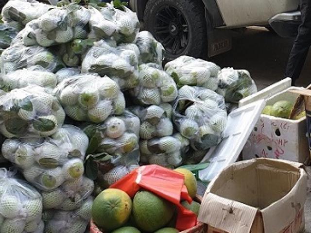 Virus SARS-CoV-2 có lây qua thực phẩm, hàng hóa?