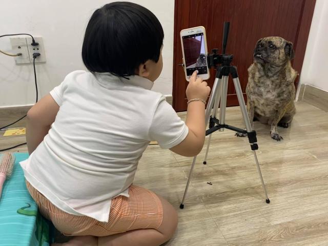 """Clip: Cậu bé loay hoay chụp ảnh cho chó cưng """"gây sốt"""""""
