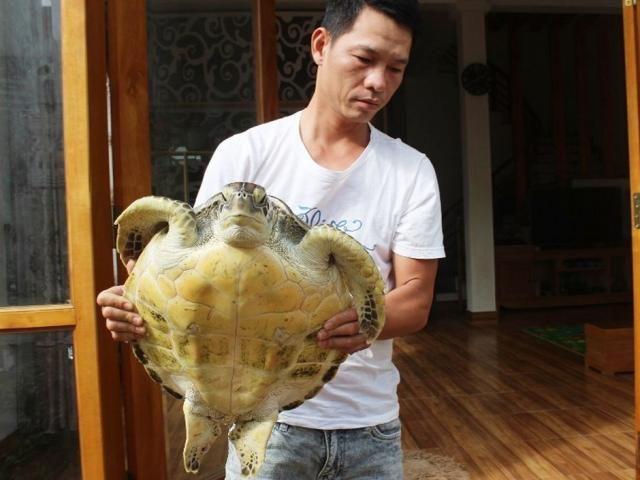 Bỏ 5 triệu đồng mua rùa biển, người đàn ông bất ngờ với thứ mình mua được