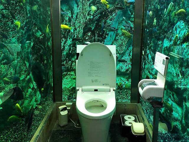 Quán cà phê Nhật Bản nổi tiếng vì chơi sang lắp cả đại dương quanh nhà vệ sinh