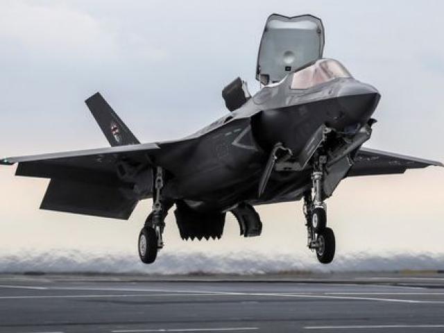 Siêu tiêm kích tàng hình F-35B Mỹ hỏng nặng vì đụng độ với... một con chim