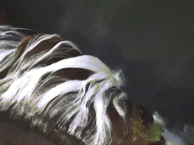 Chiêm ngưỡng cụm thác nước tuyệt đẹp, kỳ quan lớn nhất thế giới