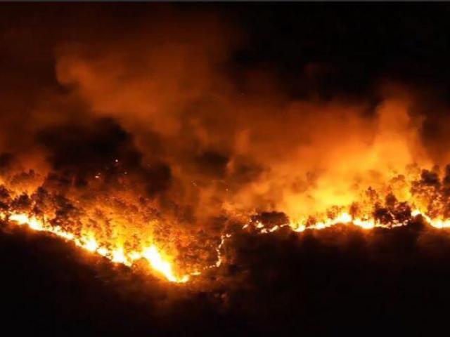 Nghi phạm gây cháy rừng khủng khiếp ở Hà Tĩnh khai gì?