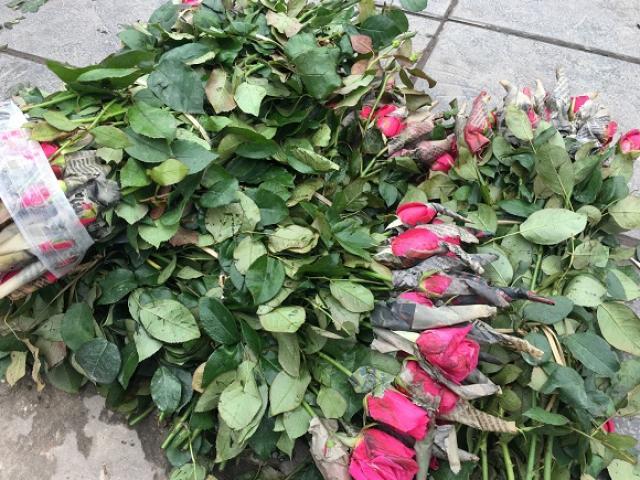 """10 nghìn đồng/50 bông hoa hồng không ai mua, nông dân Tây Tựu """"méo mặt"""" vì dịch"""