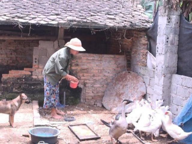 Hàng nghìn hộ dân ở Thanh Hóa tự nguyện không nhận tiền hỗ trợ Covid-19