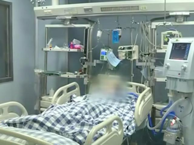 Gia đình 5 người bị ngộ độc vì uống trà giải nhiệt nhầm lẫn với loại lá kịch độc