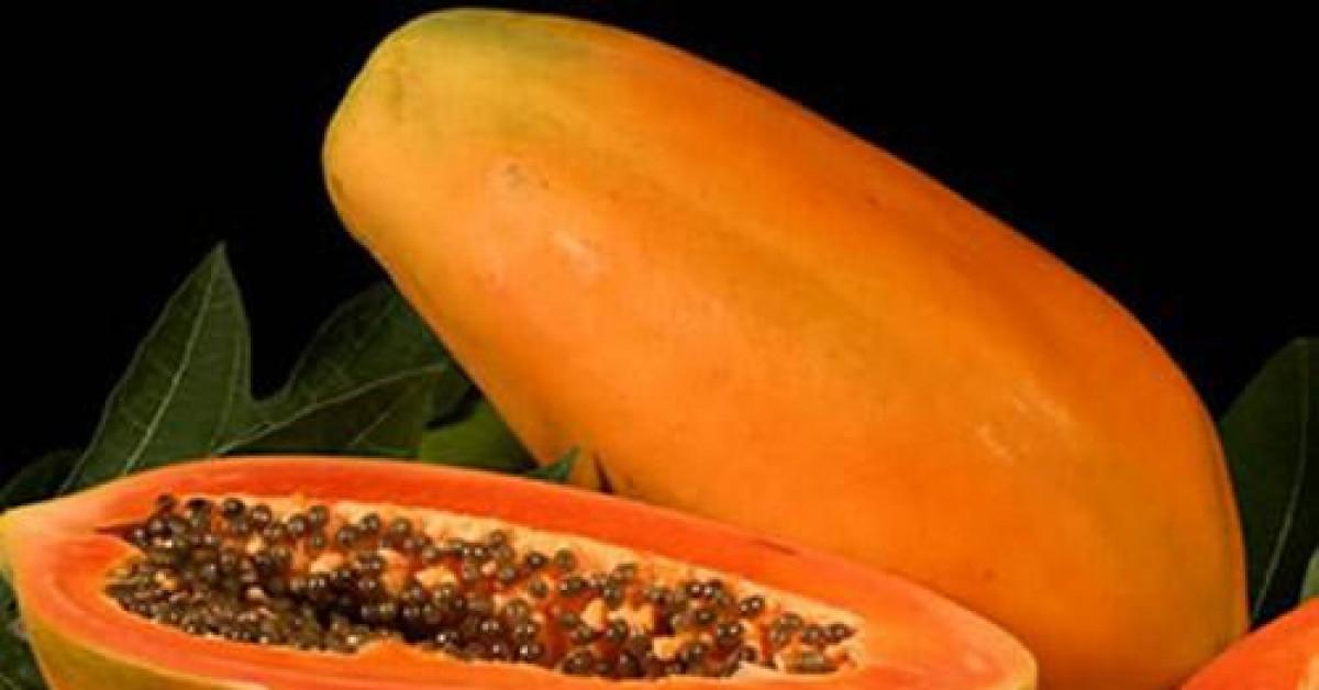 """Đu đủ: Cực tốt và cực độc, biết mà tránh khi ăn kẻo """"rước họa vào thân"""""""