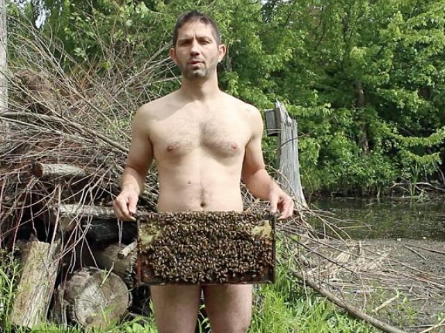 Video: Chàng trai khỏa thân chơi đùa với ong