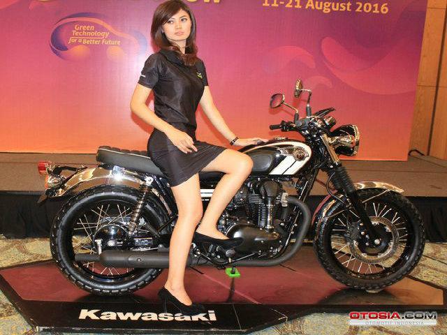 Ra mắt Kawasaki W800 giá 423,5 triệu đồng