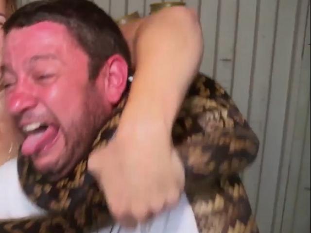 Video: Bị trăn khổng lồ siết cổ trên truyền hình Úc