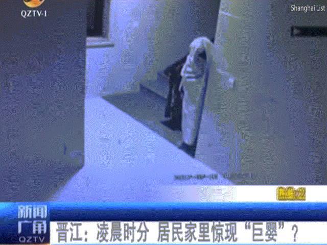 """Trộm giả làm ma để """"tàng hình"""" trước hệ thống an ninh"""