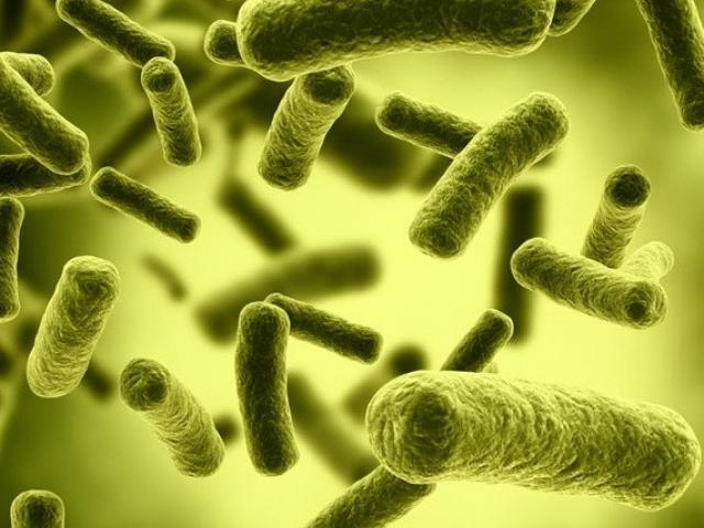 Rợn người vì món đồ nhà bếp chứa hàng triệu con vi khuẩn