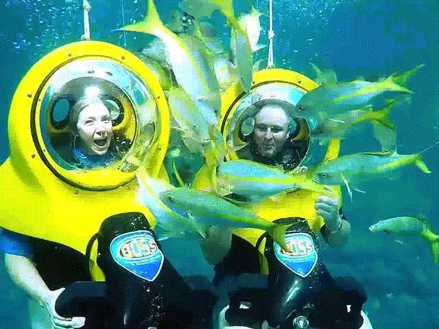 """Thích thú trò chơi """"lái xe"""" ngắm cảnh dưới...đáy đại dương"""