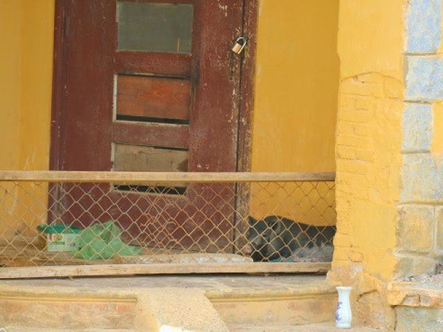 Kỳ lạ biệt thự cổ ở Đà Lạt chỉ để... nuôi lợn