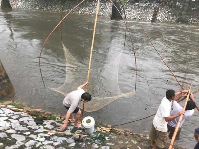 Người dân Hà Nội buông cần, giăng lưới bắt cá sau bão số 3