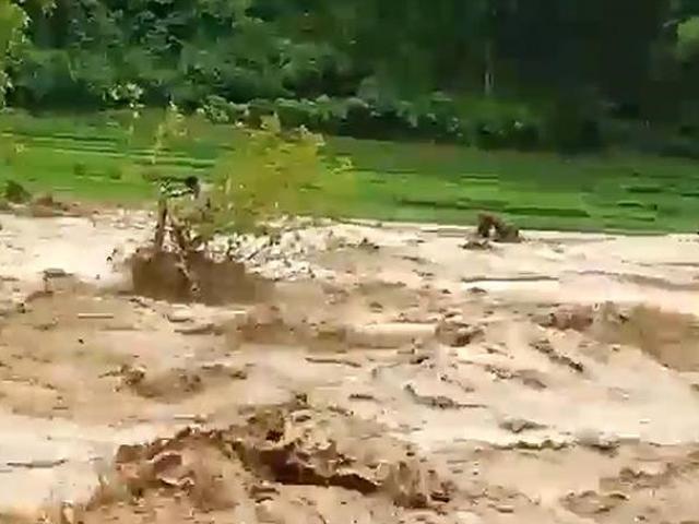 Người đàn ông 8 giờ đu gốc cây giữa dòng lũ dữ