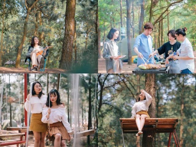 """Ghé thăm rừng thông lớn nhất Hà Nội, cực hợp """"đi đu đưa"""" với hội cạ cứng mùa Hè này"""