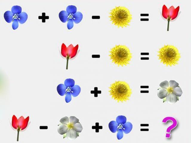 Chỉ vài bông hoa cũng tạo thành câu đố khiến mọi người trăn trở tìm đáp án