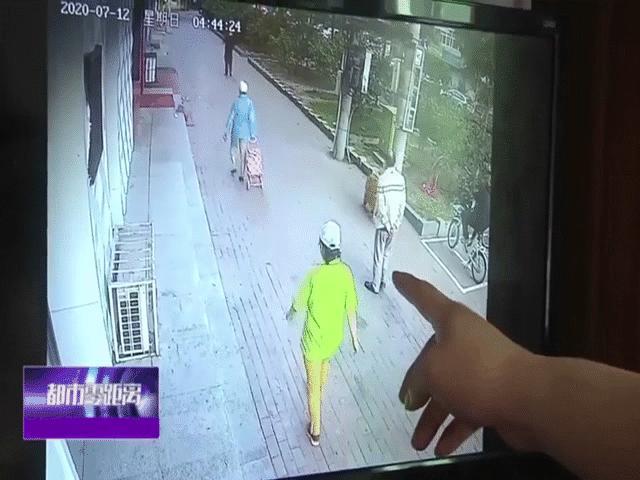 """Video: Đang dắt chó đi dạo, cụ ông bị mèo """"hạ cánh"""" trúng đầu và hậu quả không ai ngờ tới"""