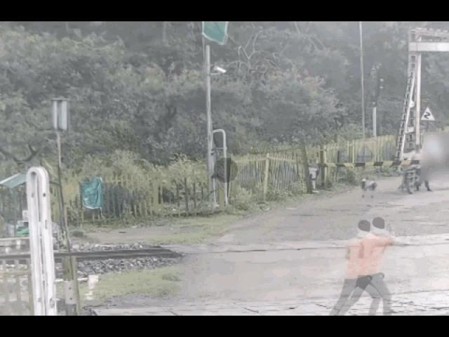 Vội vã bỏ chạy, người phụ nữ vẫn bị xe tải mất lái cán tử vong tại chỗ