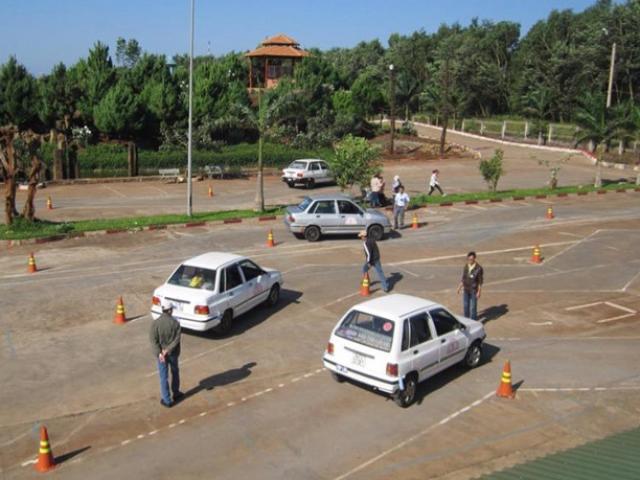 50 giáo viên dạy lái xe dùng bằng giả
