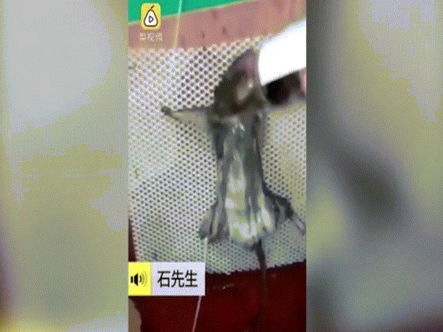 Video: Chuột bị bắt uống rượu, thiêu sống vì ăn trộm bánh mì