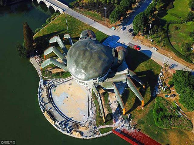 Viện bảo tàng hình con cua khổng lồ khiến du khách ngước nhìn mỏi cả mắt