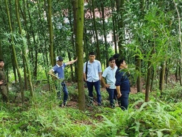 Phát hiện thi thể Phó chủ tịch xã trong rừng