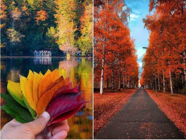 Mùa thu ở các nước trên thế giới rực rỡ và đẹp đến nhường nào?