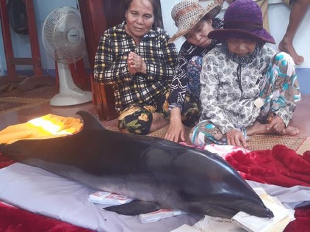 """Bắt được cá voi, ngư dân tưởng trúng """"cá lạ"""" nên mang ra chợ bán"""