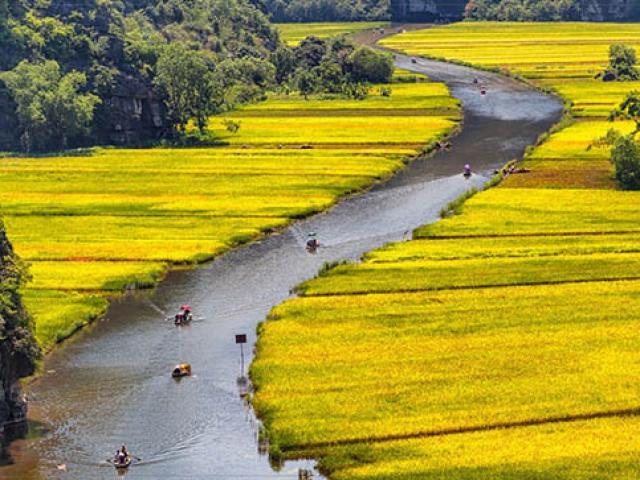 10 trải nghiệm khiến du khách nước ngoài thích thú nhất khi tới Việt Nam