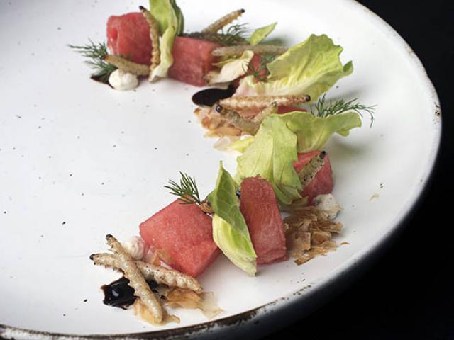 Nhà hàng biến những nguyên liệu đáng sợ thành món ăn sang chảnh, thực khách mê mẩn