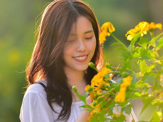 Rừng hoa dã quỳ đẹp mê hồn thu hút ngàn người check in ở Hà Nội