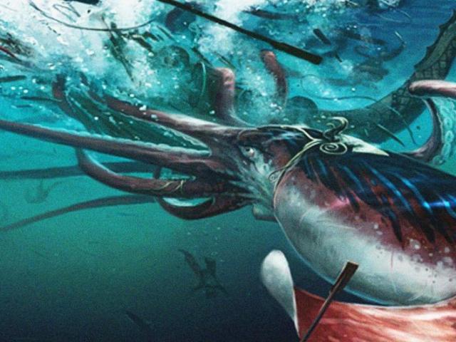 Mực khổng lồ dài 60m là thủ phạm đằng sau bí ẩn Tam giác quỷ Bermuda?