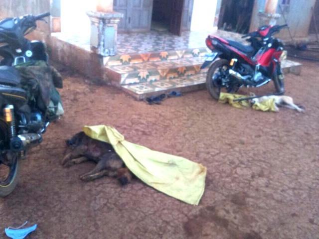 Bị trai làng vây bắt, nhóm cẩu tặc nổ súng, vứt xe chạy thoát thân