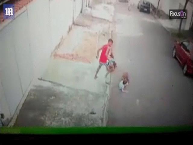 Chó pitbull cắn xé bé trai, thanh niên lao vào kịch chiến và màn thoát hiểm thông minh