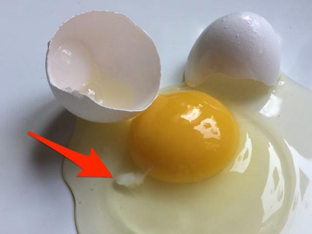Dù đảm đến mấy bạn vẫn chưa chắc biết bảo quản và lựa chọn trứng đúng cách