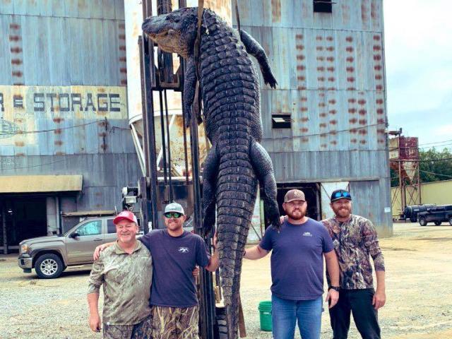 Mỹ: Cá sấu gần 400 kg lôi thuyền suốt 2 giờ và phát bắn chí mạng