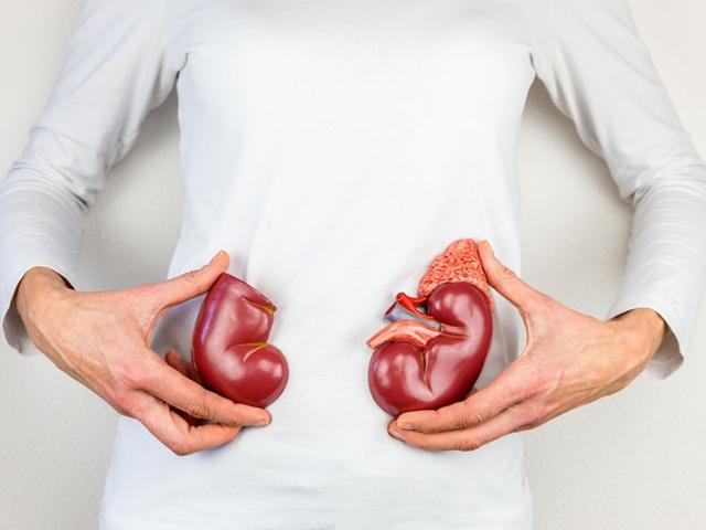 """Ngoài vai trò là """"bộ lọc"""" máu, thận còn có 4 chức năng chính mà người bệnh tiểu đường nên quan tâm"""